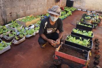 Genildo fez uma horta no quintal da casa que alugou com o dinheiro do auxílio emergencial / Foto: Carlos Rocha