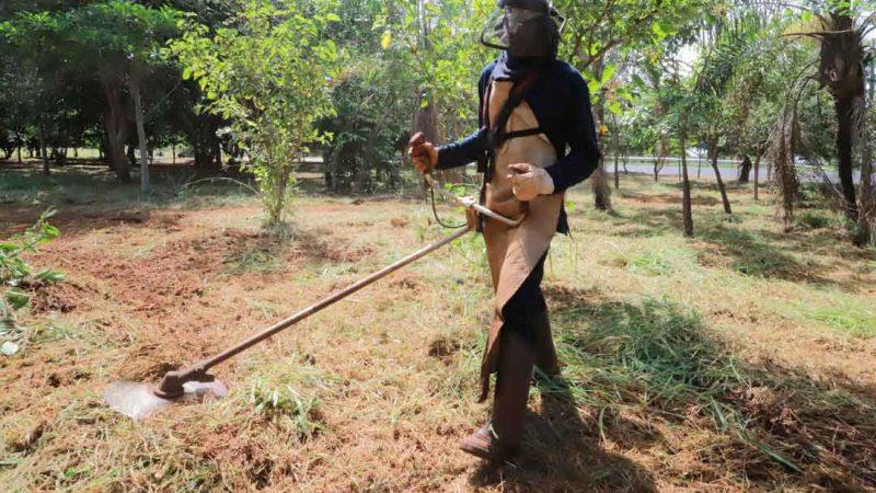 Equipes da prefeitura também trabalharam no recolhimento de galhos, poda de árvores, limpeza de parques e corte de gramado em praças
