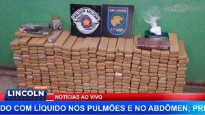 BAEP APREENDE 300 KG DE MACONHA NO TANQUINHO EM RIBEIRÃO PRETO
