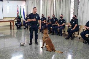 FUNDO MUNICIPAL DE CULTURA RECEBE REPASSE FINANCEIRO