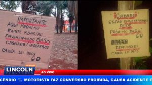 ENVENENAMENTO DE ANIMAIS NO BAIRRO LAGOINHA EM RIBEIRÃO