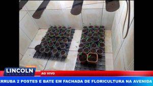 POLÍCIA MILITAR APREENDE PLANTAÇÃO DE MACONHA EM RESIDÊNCIA